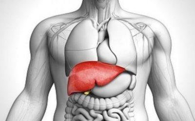 5 Habits for a healthier Liver